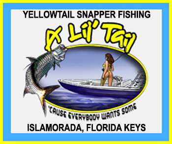 A Lil' Tail Charter Fishing