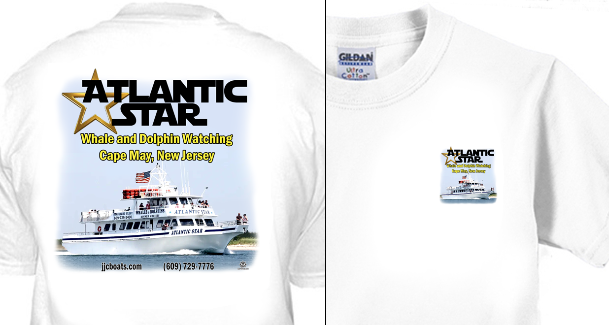 Atlantic Star Whale and Dolphin Watching