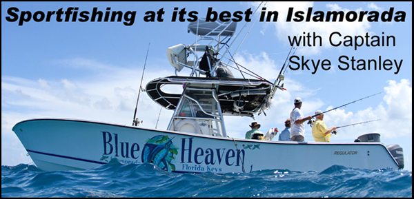 Blue Heaven Fishing Charters