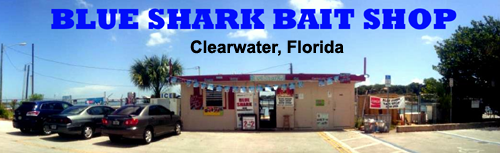 Blue Shark Bait Shop