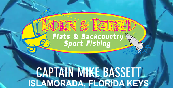 Born & Raised Sportfishing
