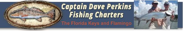 Fishing with Captain Dave Perkins