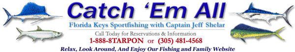 Catch 'Em All Sportfishing