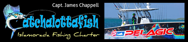 CATCHALOTTAFISH Fishing Charter