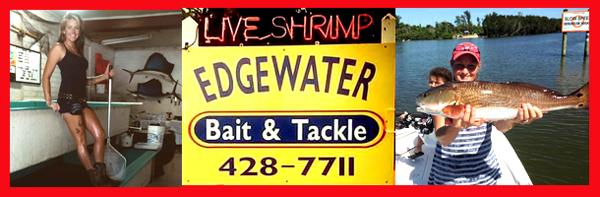 EDGEWATER BAIT & TACKLE