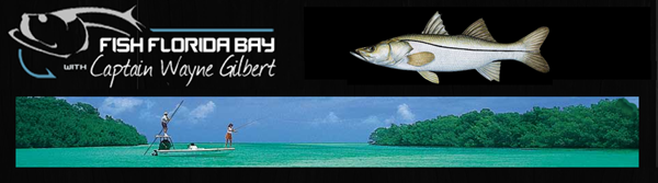 Fish Florida Bay Fishing Charters