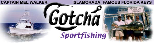 Gotcha Sportfishing