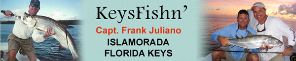 Keys Fishn'