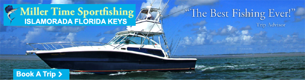 Miller Time Sportfishing