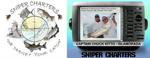 Sniper Charters