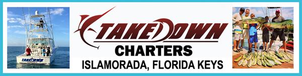 take-down-charters