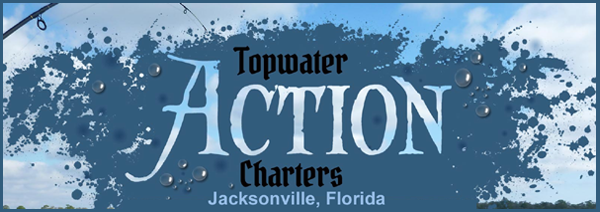 TOPWATER ACTION CHARTERS