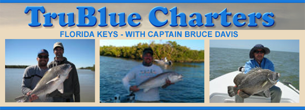 TruBlue Fishing Charters