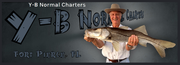 Y-B NORMAL CHARTERS